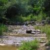 small creek near Trojan
