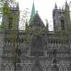 特隆赫姆的大教堂位于在。。。