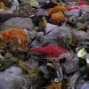 Müllentsorgungssystem
