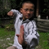 unser Kong Fu-Trainer