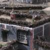 传统的藏族的楼(在楼顶就是可以烧火的木头和牦牛粪)
