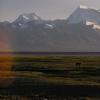 早上在海拔4500米上 - 后面是世界上第三十四高山,納木那尼峰